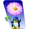 Flower Tuxy