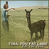 Tina you fat lard