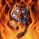 exotic animal avatar 0457